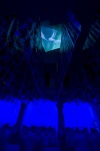 blau1 sirene